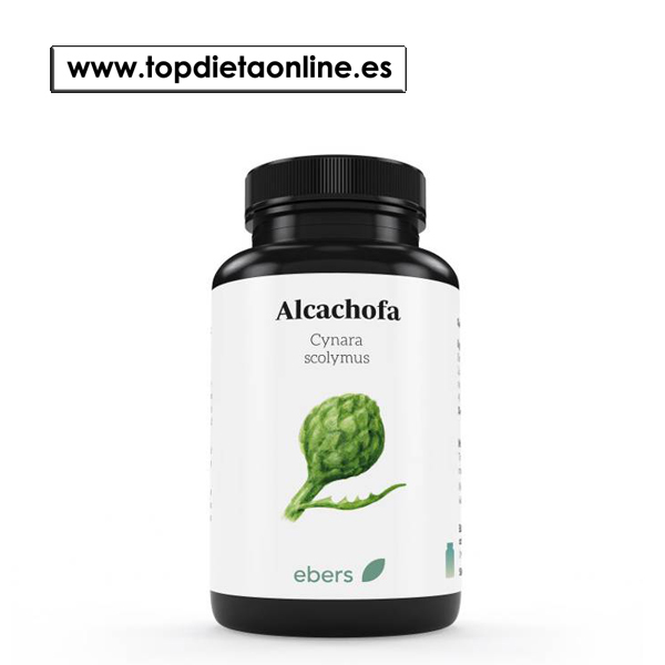 Alcachofa de ebers