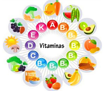 Alimentos vitaminas topdietaonline
