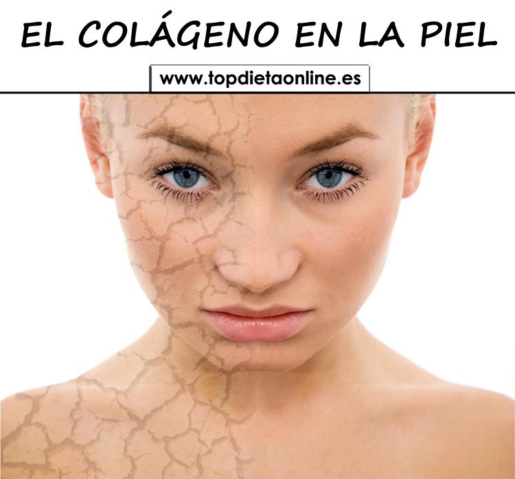 El-colgeno-en-la-piel-topdietaonline_20180918-105152_1.jpg