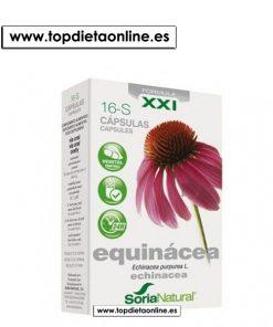 16 S Equinácea Soria Natural