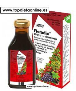 Floradix jarabe Salus
