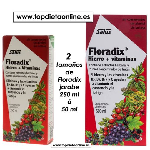 Floradix de Salus en jarabe