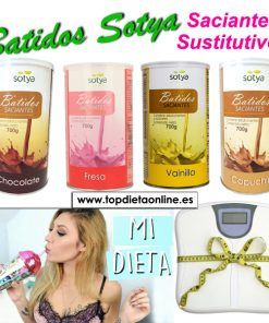 Batidos Sotya