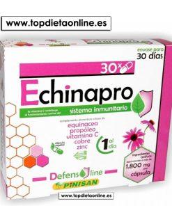 Echinapro Pinisan