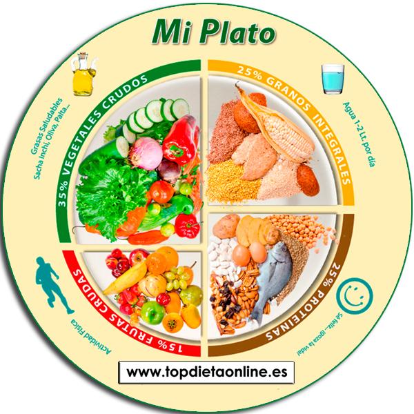 Plato alimenticio saludable